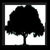 Tree Climbing Icon